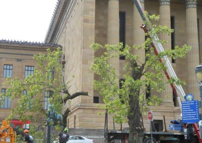Philadelphia Museum of Art removal